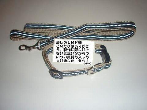 20070523193415.jpg