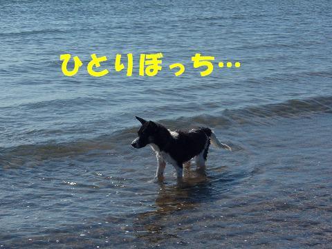 20070827124647.jpg