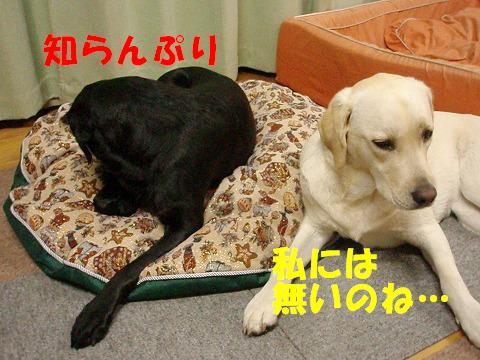 20071004171512.jpg