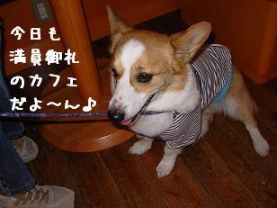 4.26ワンダフル 紋次郎
