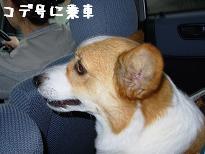 車内紋次郎2