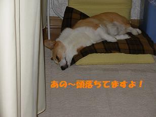 座椅子寝紋次郎