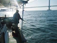メジロ釣り-1
