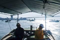 メジロ釣り-5
