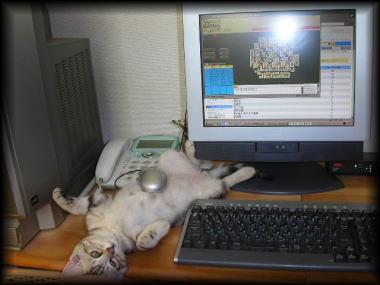 mouse_nekoB.jpg