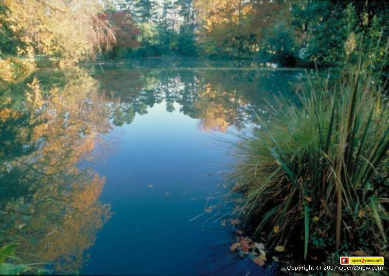 ロスロリアンの池