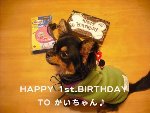 誕生日(かい)のコピー