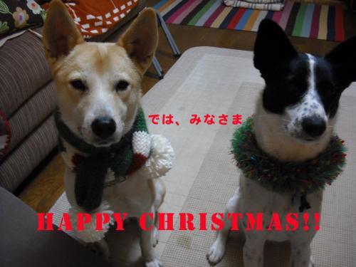 クリスマス2009-2のコピー
