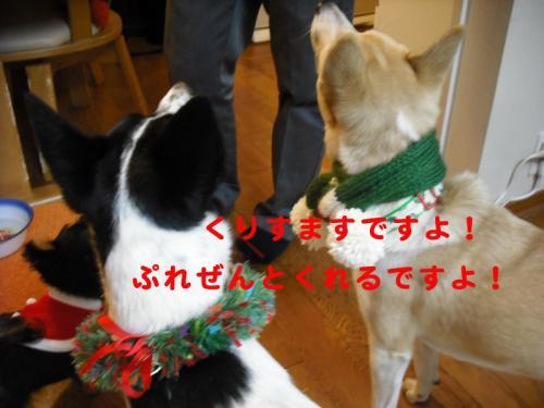 クリスマス2009-4のコピー