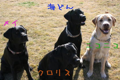 3_20071209210600.jpg