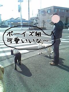 jeki4.jpg