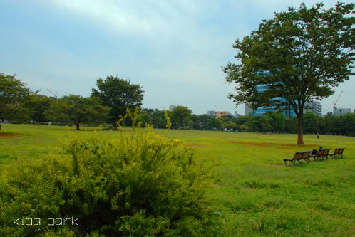 2009.9.19木場公園
