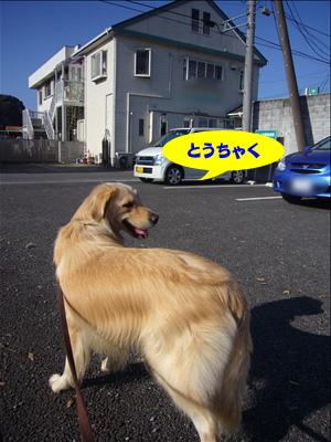 091203f