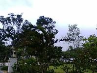 20070712181819.jpg