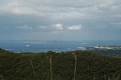 2008010203.jpg