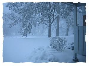 snowscape2.jpg