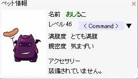 20051020203639.jpg