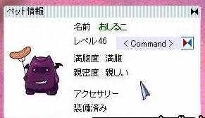 20051110210350.jpg