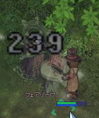 20051210233115.jpg