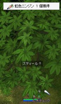 20060101112058.jpg