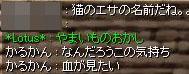 20060405190832.jpg