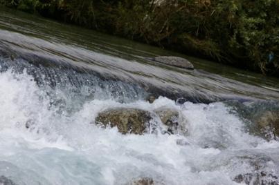 こんなに綺麗な川で。。。