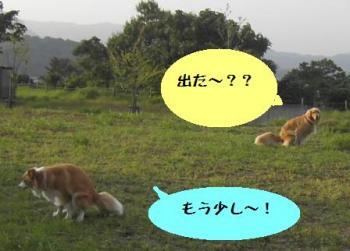 つれウーン(^_^;)