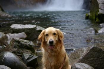 えへへ。。。水遊びしちゃったぁ♪