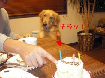 そのケーキ。。。