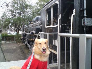 機関車と一緒に・・・
