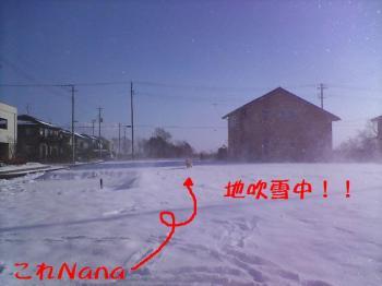 地吹雪~~~