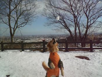 丘公園にて・・・