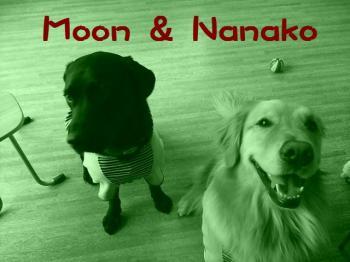 Moon&Nanako