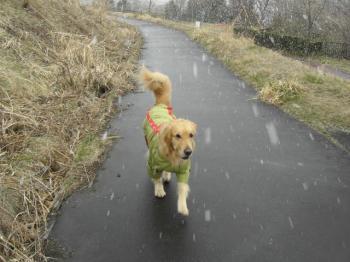 雪模様・・・