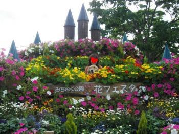 花盛り~~♪
