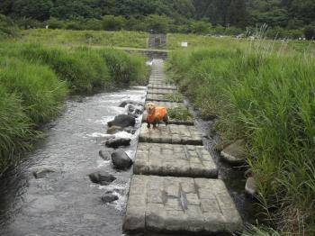 馬見ケ崎川