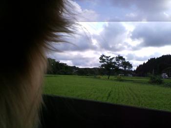 田園風景・・・