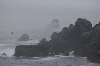 う海霧がスゴイ!
