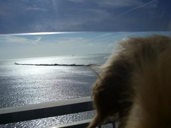 日和大橋からの景色