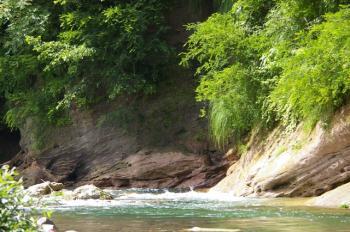 こんなに綺麗な川で・・・