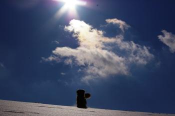 太陽の光の中で・・・