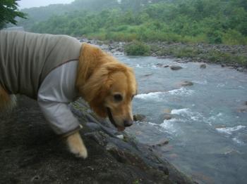 泳いでいい??