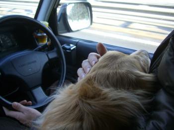 ラブラブドライブ♥♥