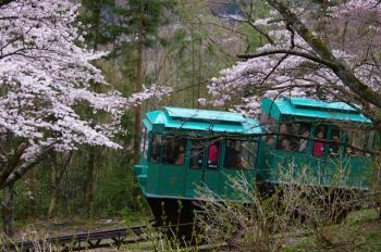 桜の中を走るケーブルカー♪