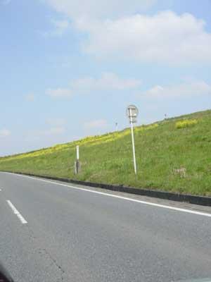 20070408-2.jpg