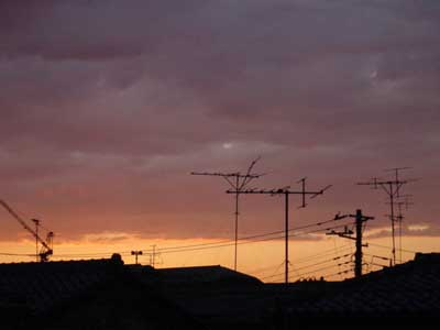 20070519.jpg