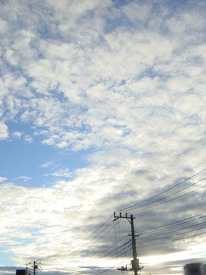 20070716-1.jpg