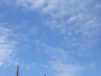20070717-2.jpg