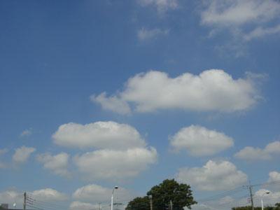 20070905-1.jpg