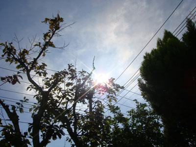 20071022-2.jpg